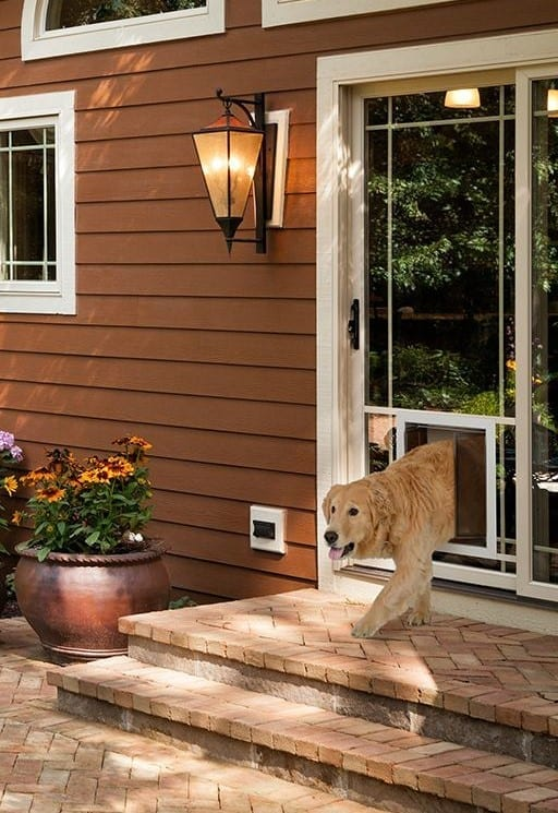 PlexiDor Glass Series sliding glass dog door