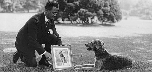 An early 1900s presidential dog named Laddie Boy with Warren G. Harding