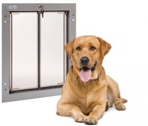 Teach your pet to use the PlexiDor pet door large