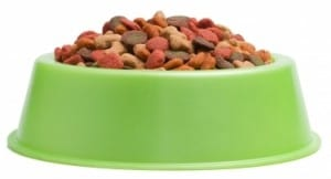 Get the right size food bowl